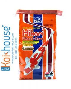 Hikari-Hikari-Wheat-Germ
